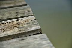 E is for Edge of the Dock (BKHagar *Kim*) Tags: bkhagar letter e edge wood wooden texture dock challenge julesphotochallengegroup riversong athens al home outdoors outside