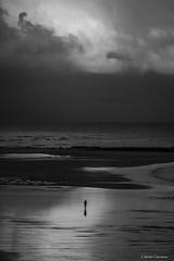 Sola (AvideCai) Tags: avidecai bn blancoynegro cádiz paisaje playa nubes cielo vertical gente