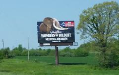 Wonders of Wildlife - Billboard (Adventurer Dustin Holmes) Tags: 2018 billboard wondersofwildlife springfieldmo springfieldmissouri touristattraction touristattractions greenecounty i44 interstate44 petexsign americas1newattraction straffordmo straffordmissouri