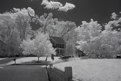 Neighborhood Dreamscape (Meleager) Tags: infrared hanover county virginia mechanicsville nikon modified monochrome bw black white d50