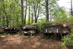 IMG_5889 (mookie427) Tags: urbex urban explore exploration explorers exploring ue derelict abandoned decay decayed ruin ruined car graveyard scrapyard old junkyard rusty rusted classic cars city georgia usa