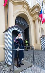 Prague Castle guard (ZUCCONY) Tags: 2018 europe prague praguecastle hlavníměstopraha czechia cz yesstreetart bobby zucco bobbyzucco pedrozucco art mural