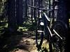Hot Day, Cool Forest (pjen) Tags: nordic boreal maastopyörä pike 275 650b kashima trail bicycle bike 2x11 outdoor vehicle 5010 5010cc 50to01 spring santacruz mtb finland nature forest carbon fullsuspension hiilikuitu maastopyöräily
