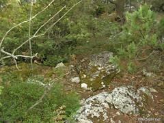 Крим, Таврські могильники на горі Кішка InterNetri Ukraine 2009 141