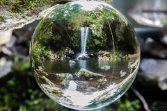 Invertion Therapy (PhilPhotosity) Tags: nature naturelovers naturephotography getoutside wow awesome life falls tamborine mountain australia queensland nikon