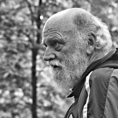 Candid of a Pilgrim (d_t_vos) Tags: man oldman pilgrim walker wanderer beard wrinkles face bald coat wood trees leafs dof outside outdoor street streetportrait streetphotography watch watching groesbeek kranenburg reichswald dtvos dickvos