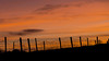 splash of red (Sunshinenshadows) Tags: sunset redsky fence wires silhouette