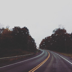 traveler (HalcyonPhotos) Tags: road rain travel traveler car ride trees outside leading distance autumn weather