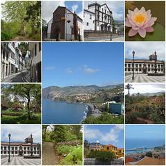 Funchal (Pedro Nuno Caetano) Tags: fdsflickrtoys madeira funchal journey mosaic