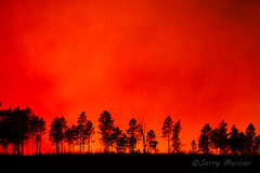 _MG_7805 - Fire on the horizon.   ©Jerry Mercier (j. mercier) Tags: nature beauty beautiful best jerrymercier mercier photography outdoor outside outdoors color colors colorful sky skies bright light wisconsin northernwisconsin fire fiery flame flames forestfire prescribedburn forest woods tree trees fires burn burning flaming chequamegonnicoletnationalforest chequamegon nicolet nationalforest ecology habitat restoration nayfieldcounty night trunk branches orange yellow red clouds billowing smoke smokey smokes cloud blue dramatic awesome drama silhouette silhouettes controlledburn fireflameflamesburncontrollednorthernwisconsin bayfieldcounty evening controlled prescribed