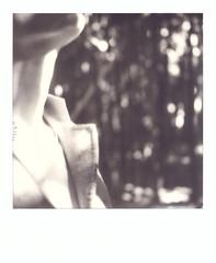 Labirinto della Masone, Parma. (Paolo Della Ciana) Tags: polaroidoriginals polaroid impossibleproject instantphoto polaroidisnotdead polaroiders polaroidersitalia analogcamera analog analogphotography sx70 filmphotography makerealphoto impossiblehq ishootfilm polavoid thepolavoid squaremag polaroidoftheday createoriginals shootfilm useinstantfilm expolaroid expolaroidgallery ifyouleave photocollective hylasmag polazine parma labirintodellamasone