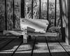 IMGP2025 (agianelo) Tags: wheel barrow lines deck railing shadow monochrome bw blackandwhite