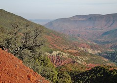 colours of the Atlas Mountains (SM Tham) Tags: africa morocco atlasmountains countryside landscape mountains valley tree plants soil mountainside sky rocks terrain