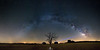 The Milky Way Arc over the century-old oak (Quercus ilex) - Pozo Cañada (Albacete, Spain) (Juan María Coy) Tags: night noche estrella verylongexposure sky cielo nocturne nocturna stars estrellas airelibre víaláctea milkyway castillalamancha españa spain star samyang10mmf28edasncscs pozocañada albacete longexposure photopills canon7dmarkii