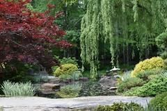 Gibbs Gardens (May trip, 2018) (rootcrop54) Tags: gibbsgardens ballgroundgeorgia cherokeecounty georgia may2018 northgeorgia gardens