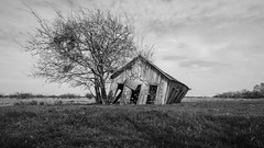 Shaking The Ground (Wayne Stadler Photography) Tags: blackwhite countryside shack abandoned building ruins barn leaning shed weathered monochrome farm rural blackandwhite texas field