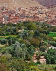 contrasting landscapes (SM Tham) Tags: africa morocco atlasmountains landscape village oasis crops trees dry arid soil green lush fertile buildings houses mountainside valley