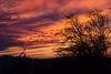 coucher de soleil flamboyant 2 (Rudy Pilarski) Tags: nikon tamron d7100 2470 sky burning tree cloud nuage ciel city urbain urban urbano europe europa paris color couleur colour