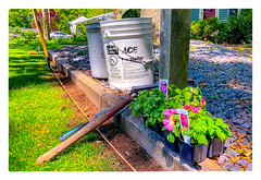 This Week's Project (Timothy Valentine) Tags: 2018 flowers 0518 impatiens plants tools home gardening eastbridgewater massachusetts unitedstates us