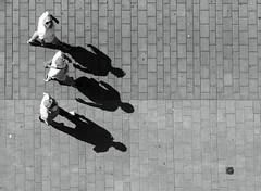 6 (frankdorgathen) Tags: ruhrpott ruhrgebiet walking pedestrian fusgänger fusgängerzone limbeckerplatz essen stadtzentrum downtown urban city vogelperspektive perspektive perspective blackandwhite schwarzweiss schwarzweis monochrome