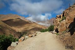 Atlastrekking (morbidtibor) Tags: africa northafrica morocco desert atlas atlasmountains toubkal trekking hiking