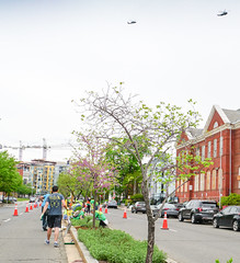 2018.05.06 Vermont Avenue, NW Garden - Work Party, Washington, DC USA 01756