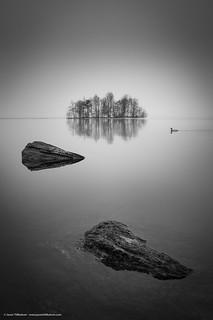 Jason Tiilikainen - Photobombed