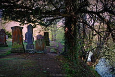 Distant Echoes (Rollingstone1) Tags: luss lochlomond scotland church cemetery graveyard graves gravestones tree river earth grass colour vivid art artwork ancient monument wood woodland