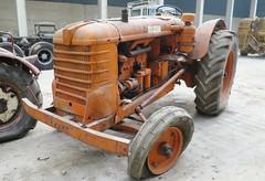 Fiat 80 R (samestorici) Tags: trattoredepoca oldtimertraktor tractorfarmvintage tracteurantique trattoristorici oldtractor veicolostorico r80 80r