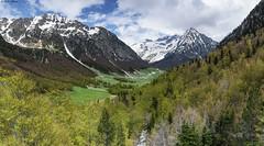 Val de Molières / Valle de Mulleres (sostingut) Tags: d750 nikon tamron haida paisaje montaña ladera valle bosque árbol madera nieve cielo verde primavera pirineos