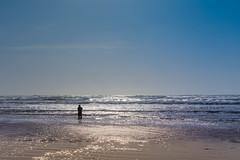 Pacific (cristian_jordache) Tags: pacific ocean sea shore sand wave fishing rod fisherman spring seattle seaside washington oregon landscape serene