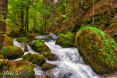 Bruyant mountain stream-5030 (George Vittman) Tags: landscape river creek stream water wild mountains mountain moss nikonpassion naturephotography jav61photography jav61 fantasticnature ngc