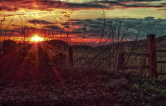Done and dusted (xDigital-Dreamsx) Tags: dusk sunlight sunset sundown redsky fence clouds sun sunshine sunrays countryside rural silhouettes landscape coth lowangle flickrfriday