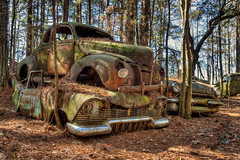 Hotel Reservations (Wayne Stadler Photography) Tags: georgia preserved retro abandoned classic rustography automotive overgrown vehiclesrust rusty junkyard vintage oldcarcity rustographer derelict white