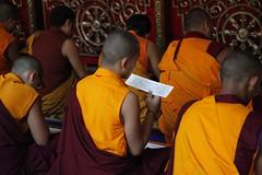_MG_6946_ss (ziggy@palyulian) Tags: palyul namdroling nyingma monastery his holiness penor rinpoche relic stupa ceremony karma kuchen khenpo mysore tibetan buddhism mugsang pema norbu ritual golden temple