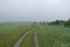 Волинське поле InterNetri Ukraine 279