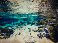 Underwater at Running Springs (J. Parker Natural Florida Photographer) Tags: gopro swimming spring underwater nature naturalbeauty waterscape landscape outdoor hero3silver color vsco vscofilm runningsprings suwannee suwanneecounty paddling water florida northflorida geology karst rock rocky