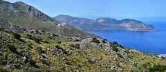 (orientalizing) Tags: coast easternmani greece kournouravine landscape mani monipanayiakournou panorama southernpeloponnese steep