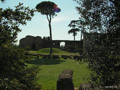 Пагорб Палатин, Рим, Італія InterNetri Italy 22