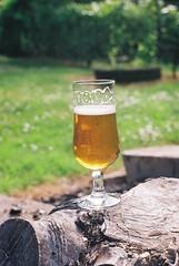 Burn A Bitch IPA (aleksandarbre.021) Tags: beer craftbeer ipa ale birra bier cerveza pivo piwa homebrew analog film 35mm zenit ttl slr kodacolor helios44