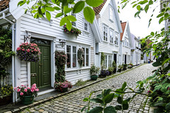 Idyllic Stavanger (Fr@nk ) Tags: stavanger img9307stavangerdef norge norway camper rv citytrip city street color europe frnk 2017 travel holiday familypicturealbum canon6d ef24105mm cosy idyllic lovely flowers frame green alley woodenhouses blog topf25 topf50 boy girl woman people architecture house krumpaaf mrtungsten62 interesting interestingness