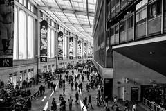Yankee Stadium Concourse (Eric Kilby) Tags: baseball mlb yankee stadium concourse bw blackwhite monochrome