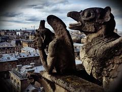 Gargoyles at Notre Dame (Alexander H.M. Cascone [insta @cascones]) Tags: paris france ile de city ville tourist attraction notre dame gargoyle beast sculpture view sky stone high altitude creature travel art