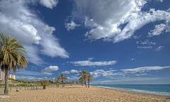 (238/18) Blue sky (Pablo Arias) Tags: pabloarias photoshop photomatix capturenxd españa cielo nubes playa arena paisaje agua mar mediterráneo palmera árbol elparaíso villajoyosa