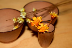 wooden bowls with flowers (maggimini) Tags: wood bowl flowers miniatures