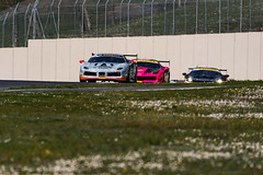 "Ferrari Challenge Mugello 2018 • <a style=""font-size:0.8em;"" href=""http://www.flickr.com/photos/144994865@N06/41083313304/"" target=""_blank"">View on Flickr</a>"