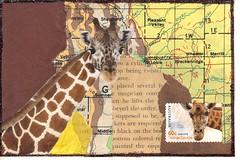 Giraffe pc (bbsporty) Tags: swapbot handmade postcard mailart map giraffe