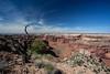 Canyonlands (ℓéna~) Tags: canyonlands np nationalpark usa usnationalpark us utah canyon
