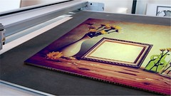 Falcon board printing (frontsignsllc) Tags: frontsigns signs signage painting printing nature flowers flickr design decoration interiordecor interiordesign