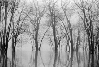 Ohio River flooded (re-scanned)